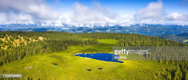 natural water reservoir in the mountains - swamp stock pictures, royalty-free photos & images