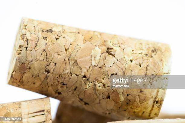 natural wine corks, recycled corks - cap stock pictures, royalty-free photos & images