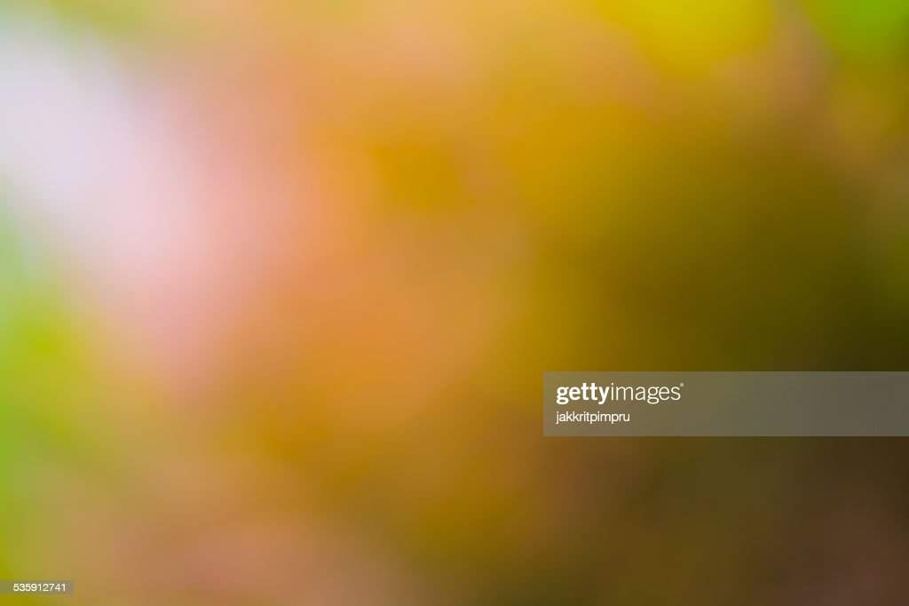 Natural yellow gold bokeh background : Stock Photo
