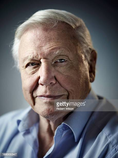 Naturalist and broadcaster David Attenborough is photographed for the Times on September 14 2012 in London England