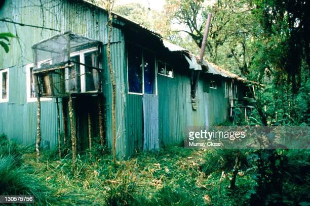 Naturalist Dian Fossey's cabin at the Karisoke Mountain Gorilla Research Centre in Rwanda 1988 This photograph was taken during the location filming...