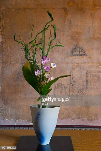 a naturally-lit interior view shows an ikebana flower arrangement in a traditional tokonoma alcove at manshuin temple, located in the northeast area of kyoto, japan. - ikebana stock pictures, royalty-free photos & images