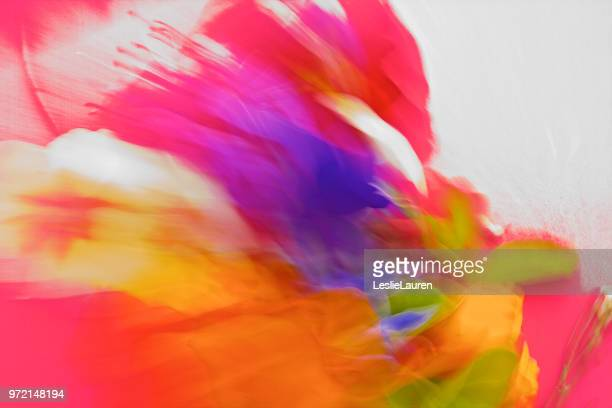nature, abstract vibrant,bold coloured pantones - lauren summers stock photos and pictures