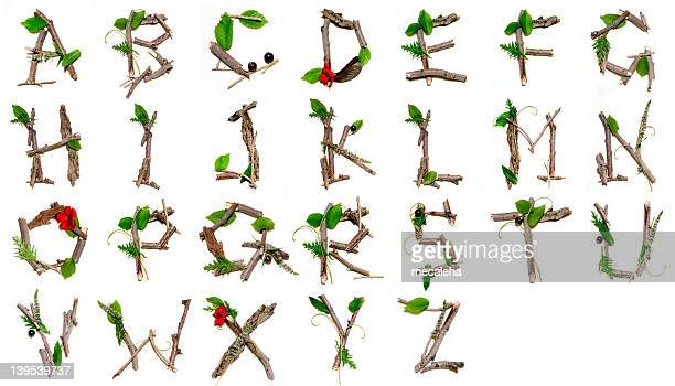 nature alphabet - twig stock pictures, royalty-free photos & images
