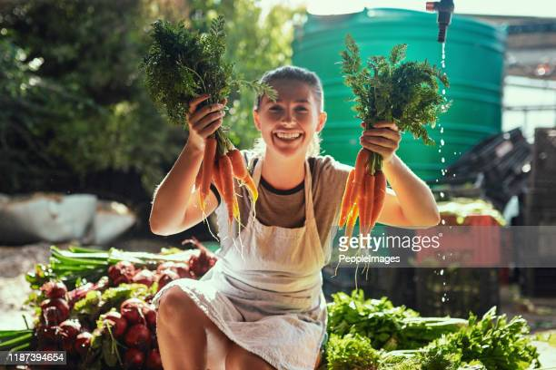 nature always gives you more than you bargained for - agricultural occupation stock pictures, royalty-free photos & images