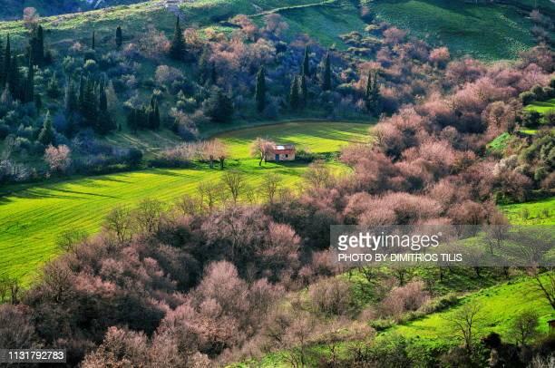 Nature at Fanari envirosns,Karditsa
