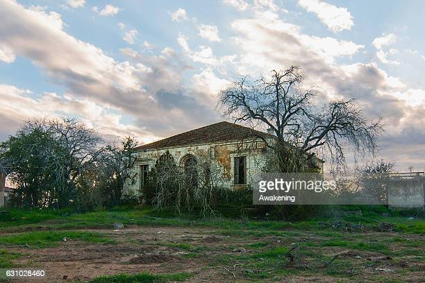 Nature covers the abandoned houses of the Varosha quarter on January 5, 2017 in Famagusta, Cyprus. Prior to the Turkish invasion of Cyprus in 1974,...