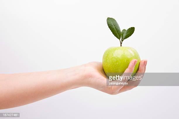Nature Fresh Green Apple