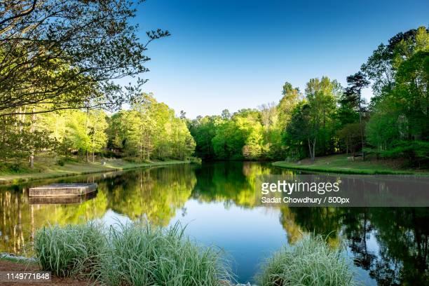 nature image - cary stockfoto's en -beelden