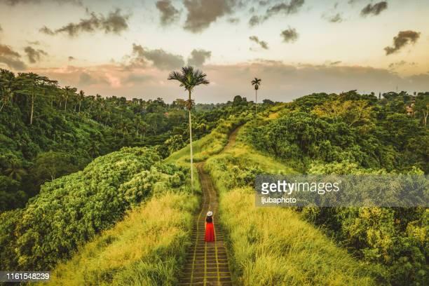 la nature est le bonheur - bali photos et images de collection