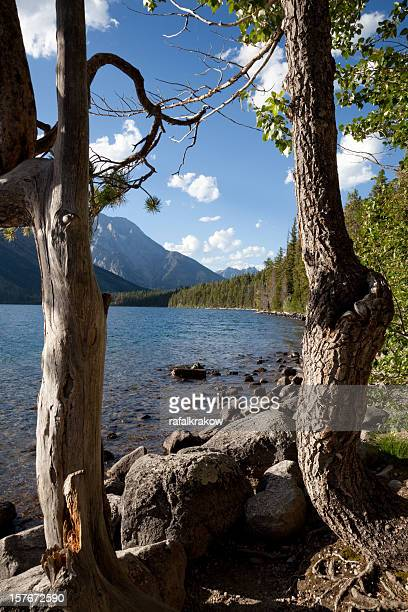 Nature landscape - lake and mountains