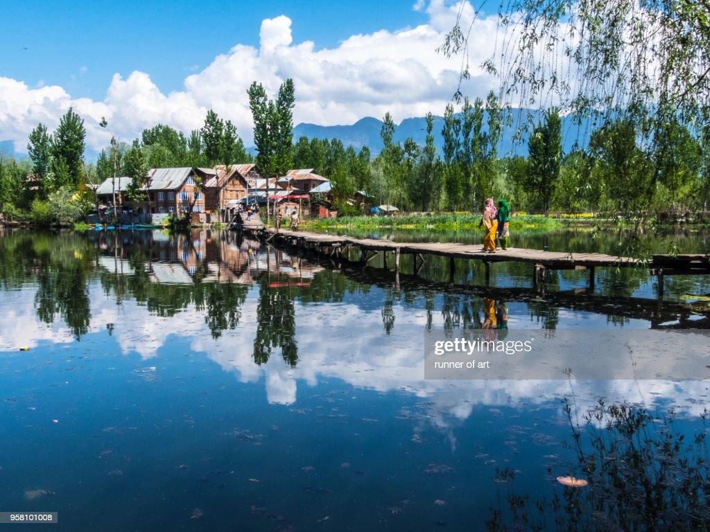 Nature lifestyle of Dal Lake : Stock Photo