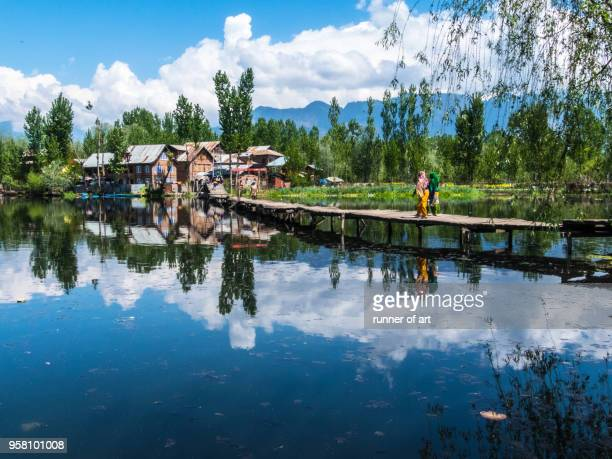 nature lifestyle of dal lake - kashmir stock photos and pictures