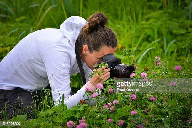 A nature lover takes a close up photograph of flowers in Alaska