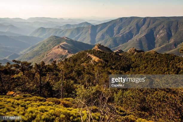 nature - paysages cevenols - ガール県 ストックフォトと画像