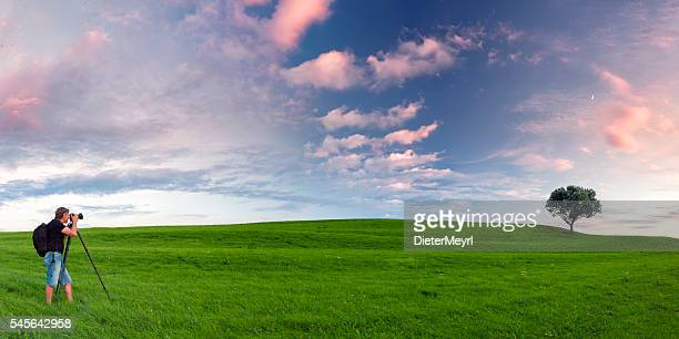 Nature photographer on green meadow in front of single tree