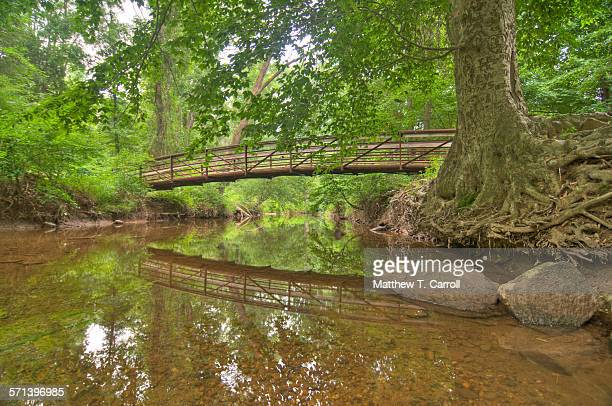 nature - fairfax county virginia stock photos and pictures