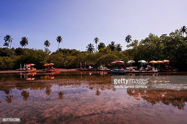 nature reflections in the river maracaipe. - espelho stock pictures, royalty-free photos & images