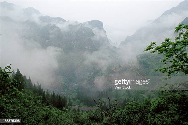 Nature Scene In Shennongjia,Hubei,China