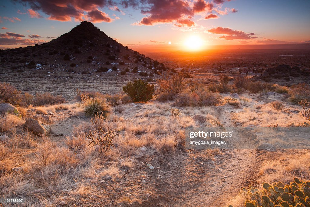 nature trail sunset : Stock Photo