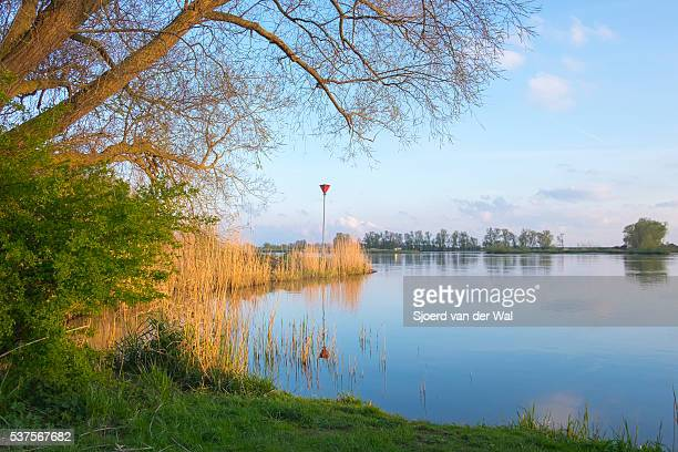 Nature view at the river IJssel in The Netherlands.