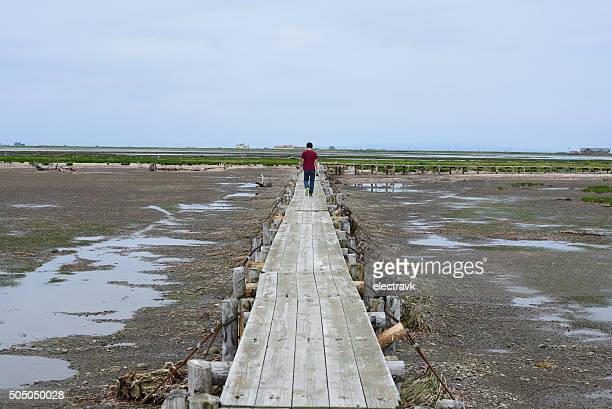 nature walk - sea of okhotsk stock pictures, royalty-free photos & images
