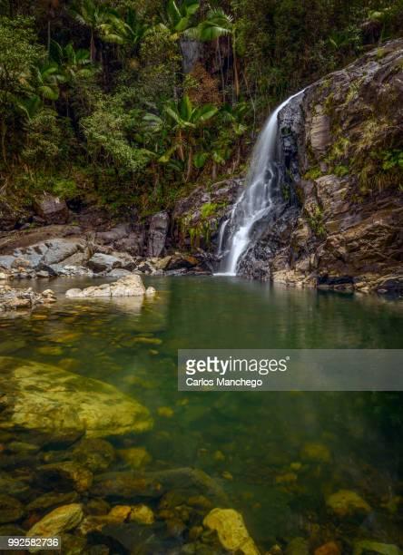 nature's beauty - paisajes de puerto rico fotografías e imágenes de stock
