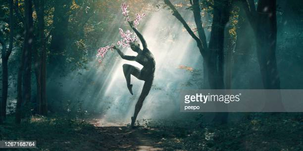 nature's blossom tree woodland nymph dancing in sun dappled forest - beauty in nature stock pictures, royalty-free photos & images