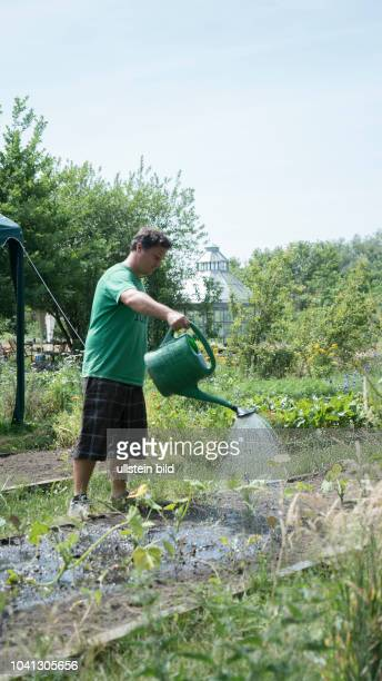 Natur-Garten und Gemüsebau der Bonnekamp-Stiftung in Essen-Katernberg, Mitarbeiter gießt Pflanzen, 21.6.2017, Foto Robert B. Fishman