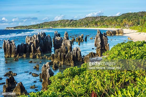 naurus rocky coastline - nauru stock pictures, royalty-free photos & images