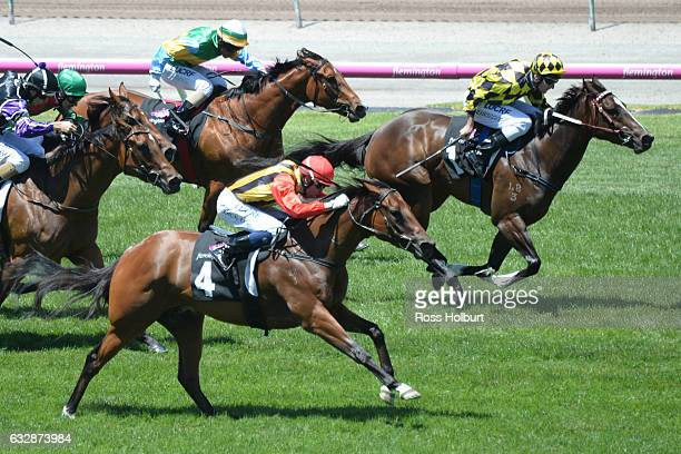 Navagio ridden by Michael Dee wins Doriemus Handicap at Flemington Racecourse on January 28 2017 in Flemington Australia
