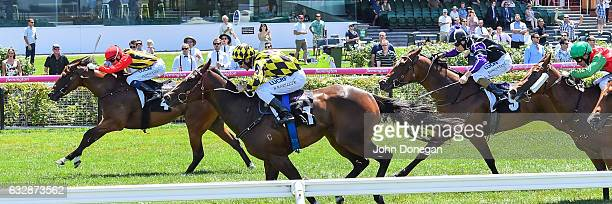 Navagio ridden by Michael Dee wins the Doriemus Handicap at Flemington Racecourse on January 28 2017 in Flemington Australia