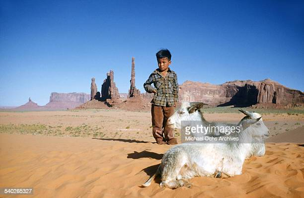 Navajo boy tends to his goats on sand dunes in Arizona.