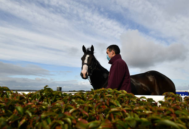 IRL: Horse Racing from Navan