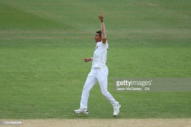Navdeep Saini of India celebrates after taking the wicket of Will Pucovski of Australia during day one of the 3rd Test match in the series between...
