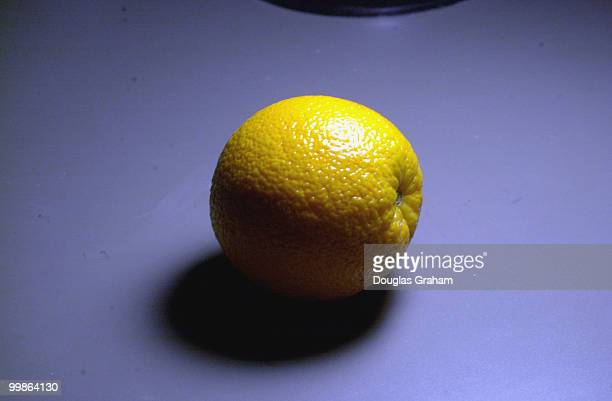 Navel Orange Illustration