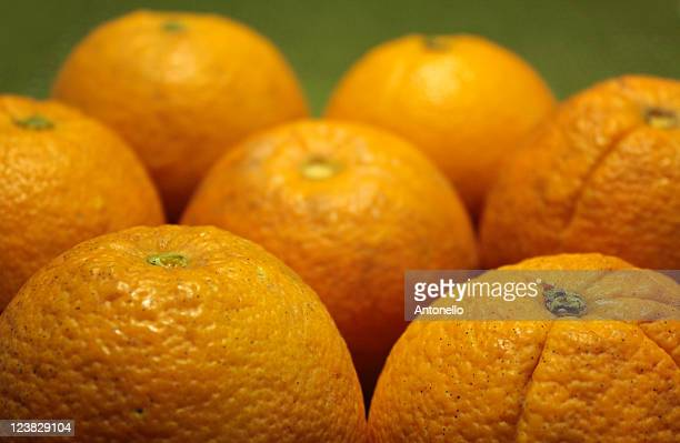 navel orange - navel orange stock photos and pictures