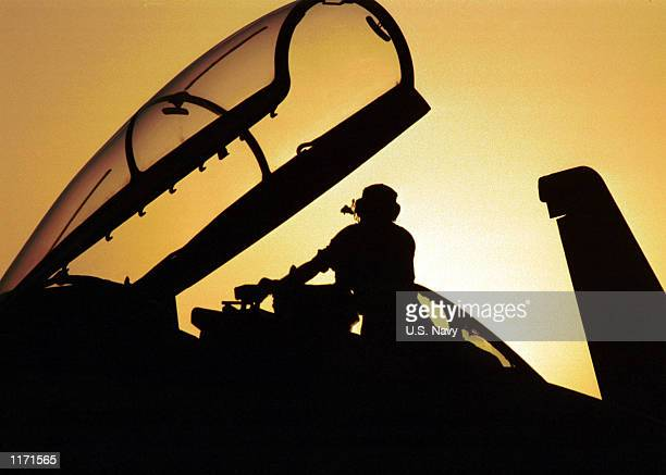 S Navy plane captain performs a daily check on an F14D 'Tomcat' October 27 2001 onboard the USS Carl Vinson The USS Carl Vinson is conducting...