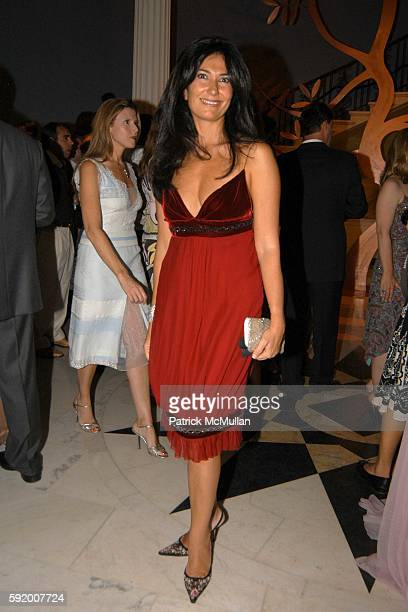 Nazee Moinian attends Museum of the City of New York 2005 Director's Council Summer Party at Museum of the City of New York on September 19 2005 in...