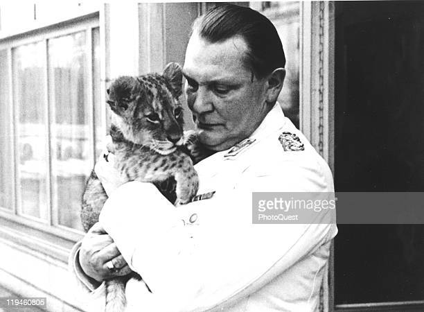 Nazi leader Hermann Goering plays with one of his pet lion cubs, February 1938.