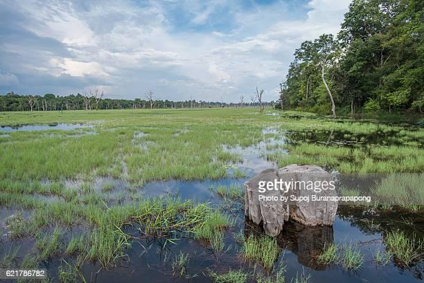 Neak Pean lake in cambodia