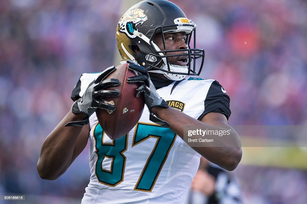 Neal Sterling #87 of the Jacksonville Jaguars carries the ball during the second half against the Buffalo Bills on November 27, 2016 at New Era Field in Orchard Park, New York. Buffalo defeats Jacksonville 28-21.