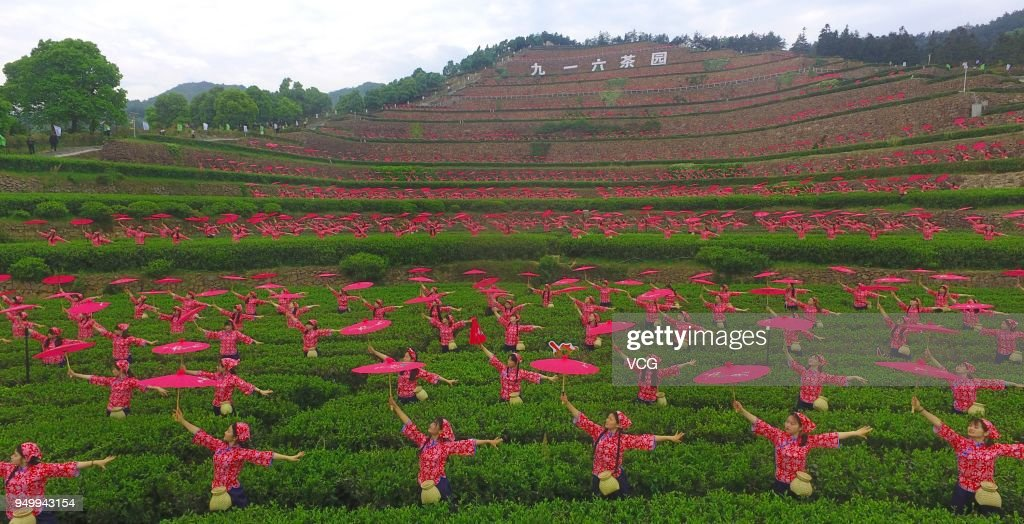 Nearly 1,000 Students Dance At Tea Garden In Lu'an