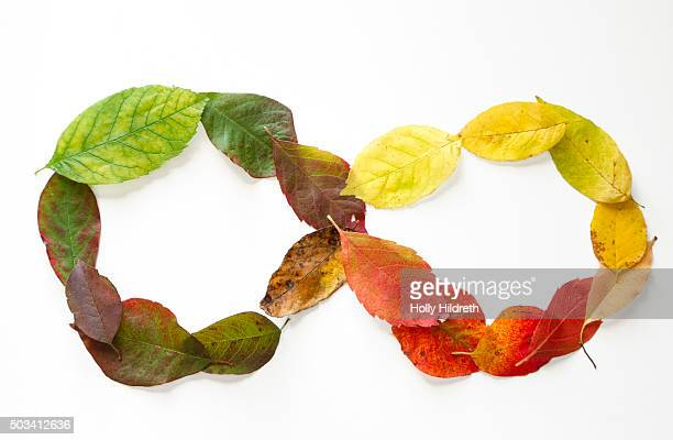 Neatly arranged colorful fall leaves going from green to brown in an infinity symbol