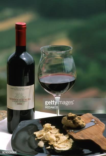 Nebbiolo d'Alba wine and black truffle of Alba Hotel Castle of Santa Vittoria Santa Vittoria d'Alba Langhe Piedmont Italy
