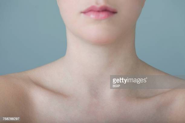 neck - clavicle stock photos and pictures