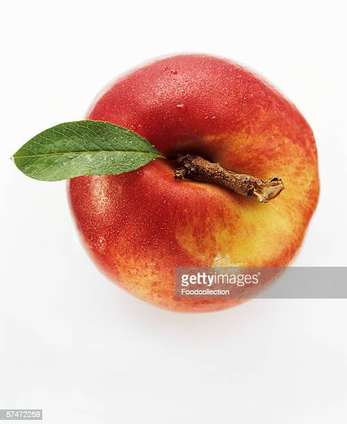 A Nectarine with Leaf from Overhead