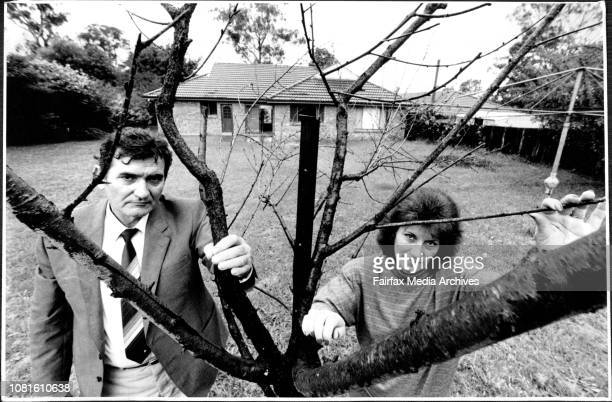 Nedljka and Angela Macic the backyard of their Emu Plains home is littered with dead trees like this peach tree The Macics believe the deaths were...
