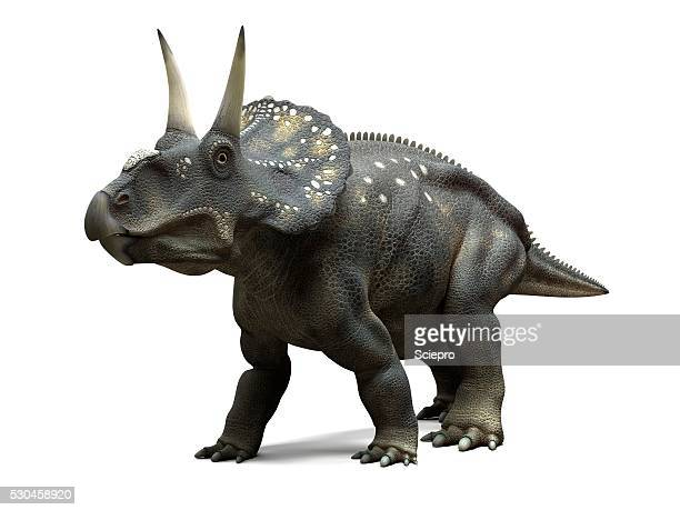 Royalty-Free (RF) Clipart of Herbivorous Ceratopsid ...