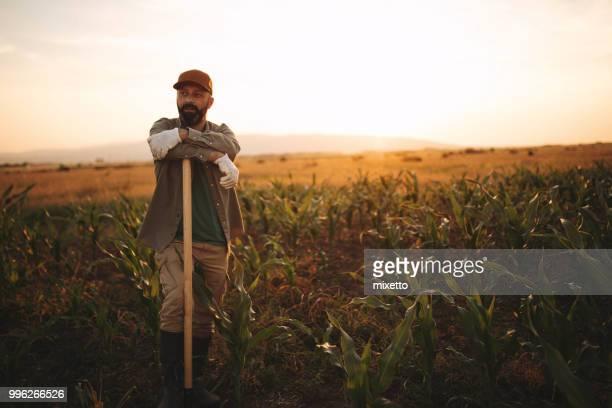 i need few minutes of resting - attività agricola foto e immagini stock